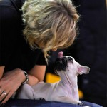 Federica Pellegrini: giochi e tenerezze con il suo cane