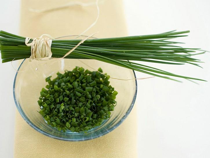 erba-cipollina