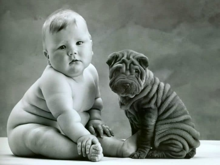 bambini-obesi-cane-sharpei-anne-geddes