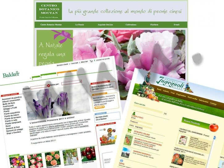 cover verde online