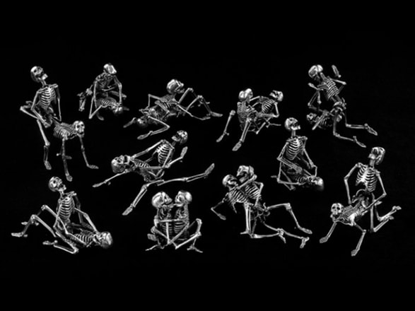 kamasutra scheletri cover