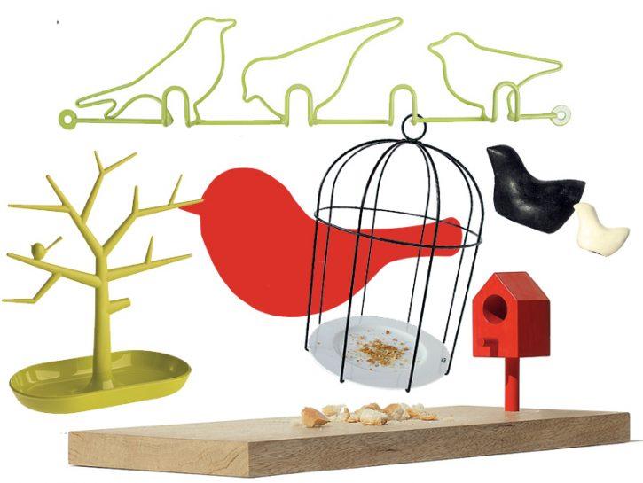 cover nido uccellini