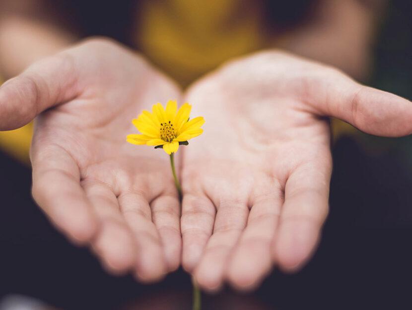 gentilezza cambia vita