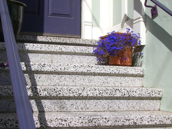 Fiori blu: giacinti e muscari per il tuo terrazzo