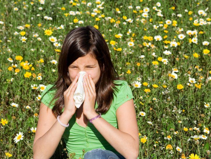 Allergie: come sopravvivere al polline
