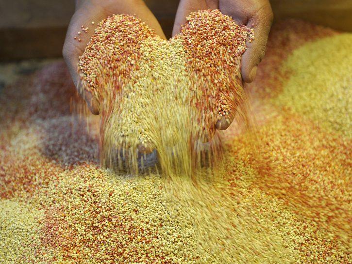 Cereali e non solo per il tuo benessere