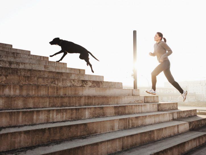 Allenarsi con il cane: ci guadagni in salute e felicità