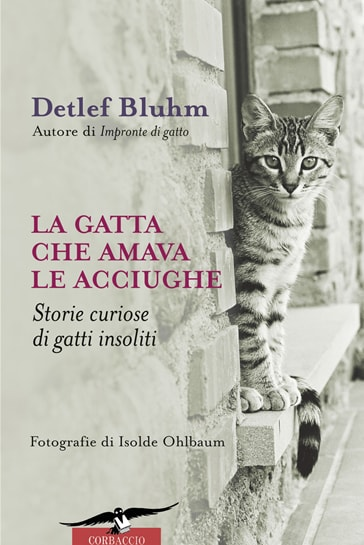 La gatta che amava le acciughe, di Detlef Bluhm