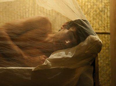 Man asleep under mosquito net