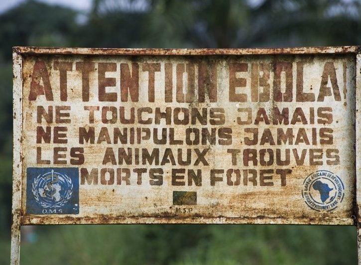 Che cos'è l'Ebola?