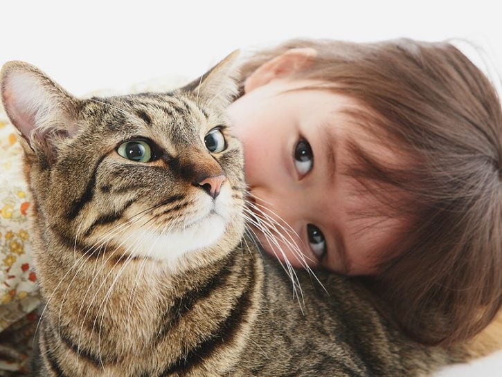Felini e neonati