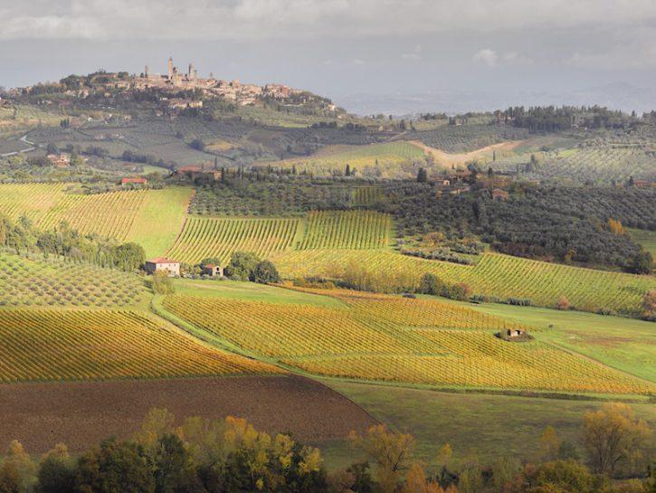 Enogastronomico in Toscana