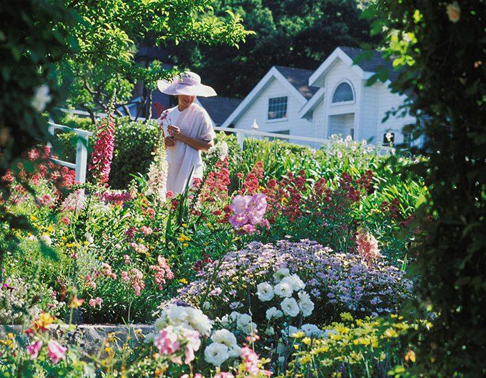 Un giardino biodiverso