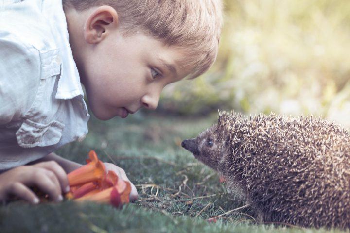 VIVERE CON PASSIONE La curiosità è il motore dell'evoluzione. Stimolare un bambino a nutrire un at