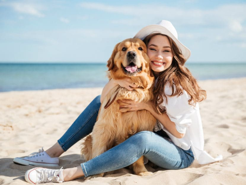 cani e personalità