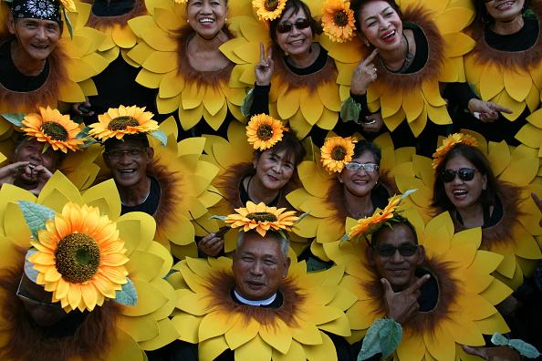 Festival dei fiori, Filippine