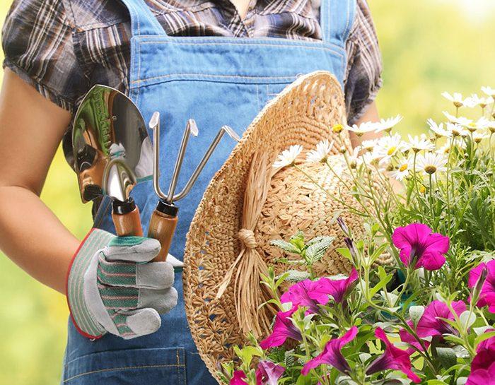 Le unioni perfette di piante e fiori