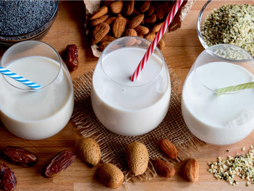 latte vegetale fatto in casa