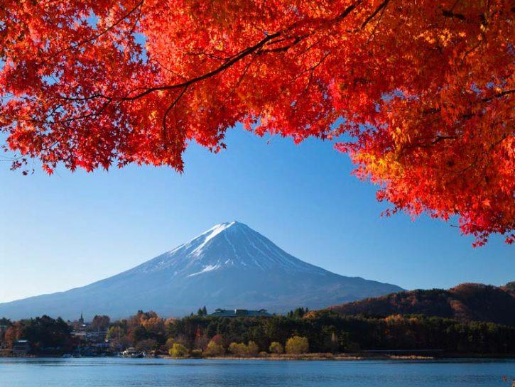 previsioni meteo colori autunno giappone momijigari rito antico