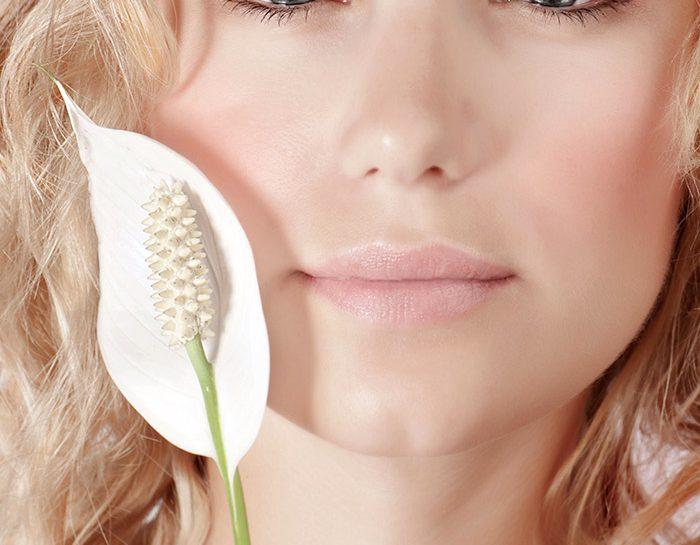 un fiore che ti assomiglia