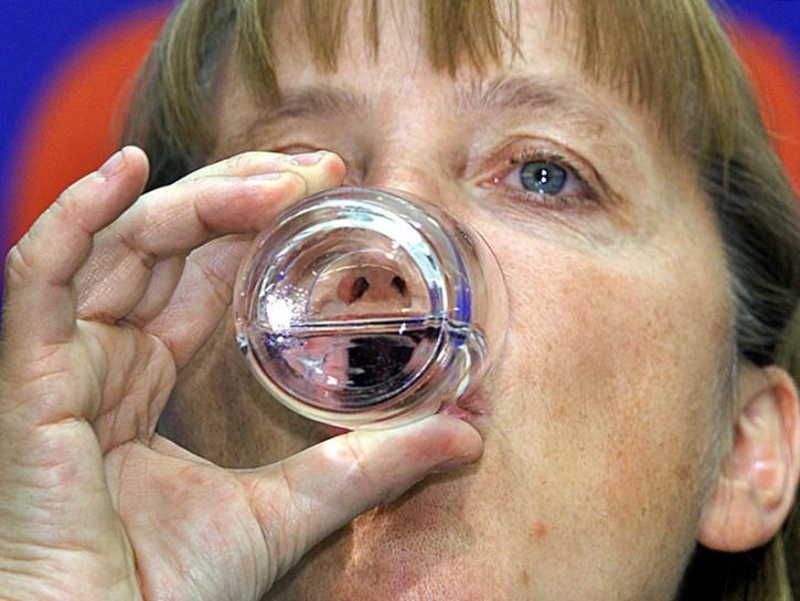Merkel 2001