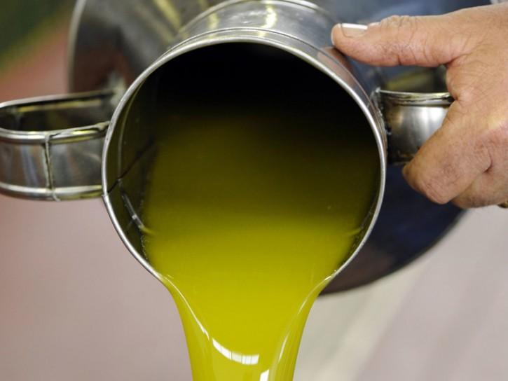 Olio extravergine frantoio