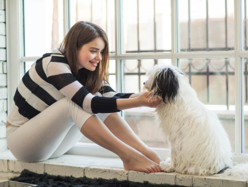 Le migliori razze di cani in appartamento