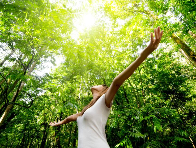 I benefici del contatto con la natura