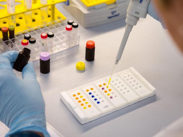 Virus zika laboratorio ricerca