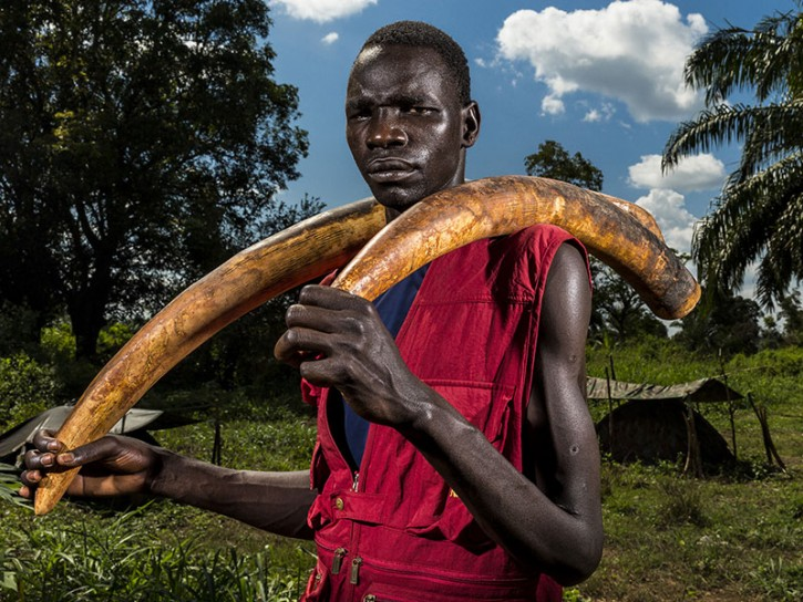 © Brent Stirton Ivory Wars 02