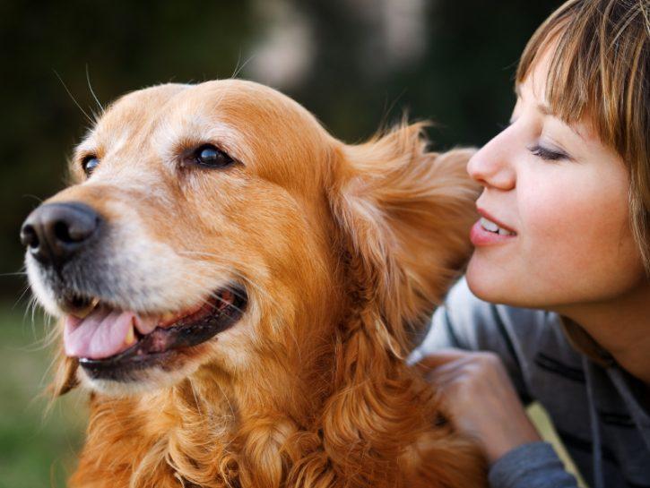 Terapia con gli animali, riconosciuta dalla medicina ufficiale