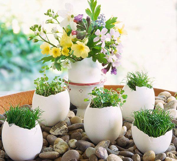 I fiori di Pasqua