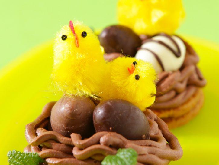 I nidi cioccolato