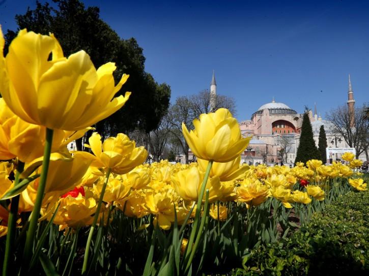 Tulipani a Istanbul