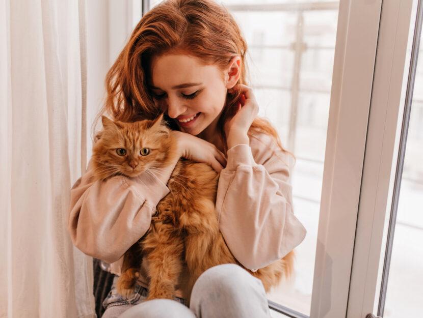 come rendere felice il tuo gatto