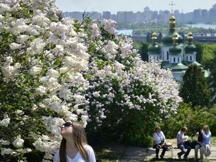 Primavera Ucraina