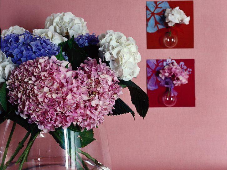 Ortensia: 8 idee fai da te per decorare casa - Donna Moderna