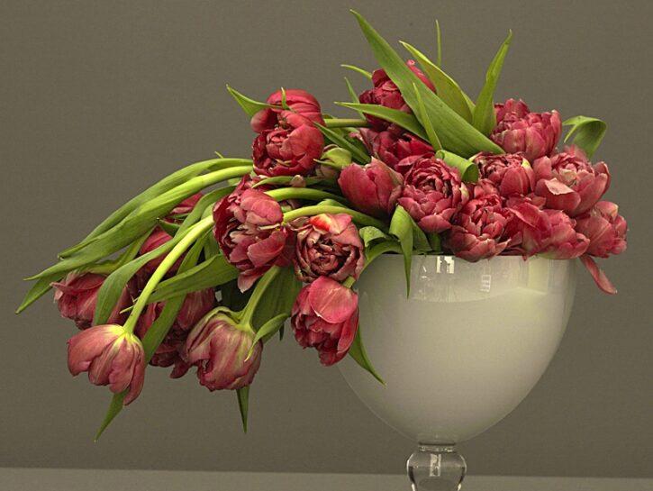 L'alzatina con i tulipani