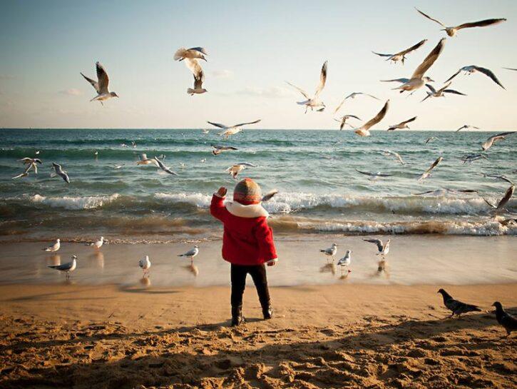 asilo del mare