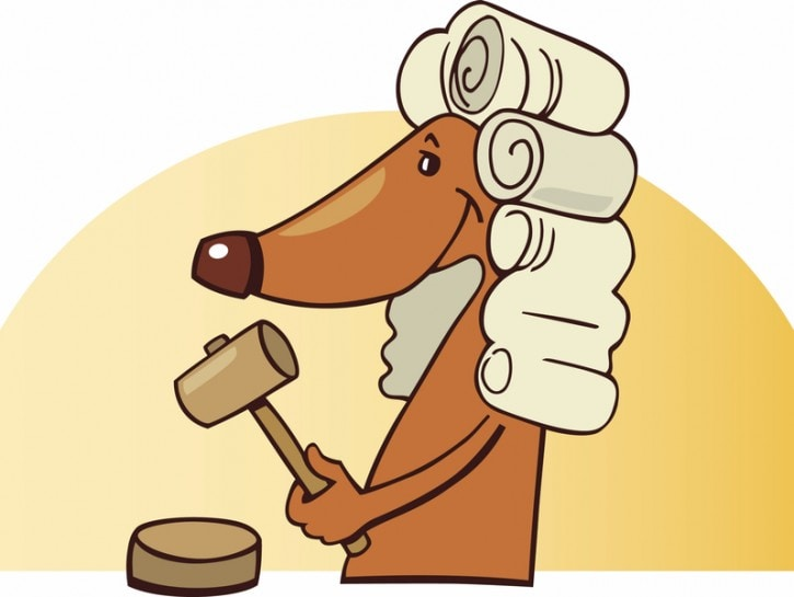 cane in tribunale