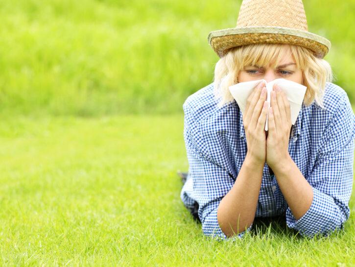 graminacee allergia