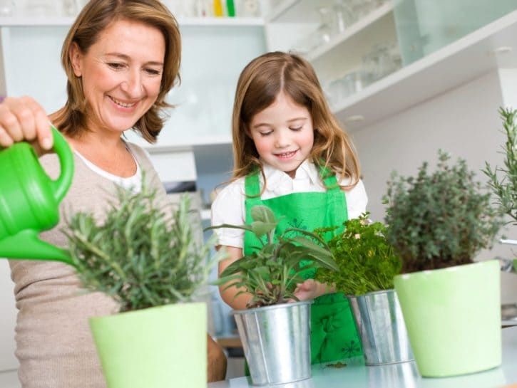 Come coltivare in poco spazio