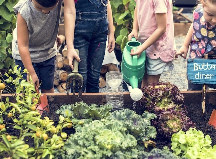 Attività Montessori da fare in giardino