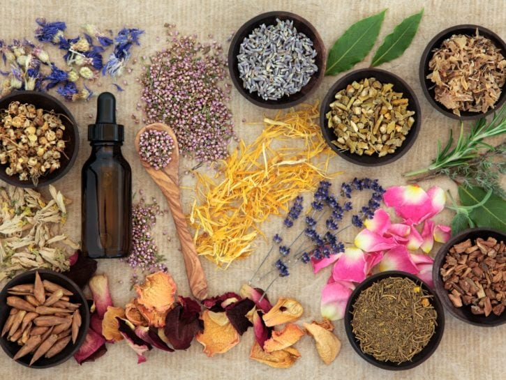 piante difese immunitarie