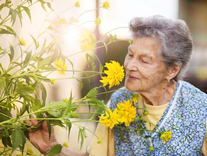 Donna anziana fiori gialli