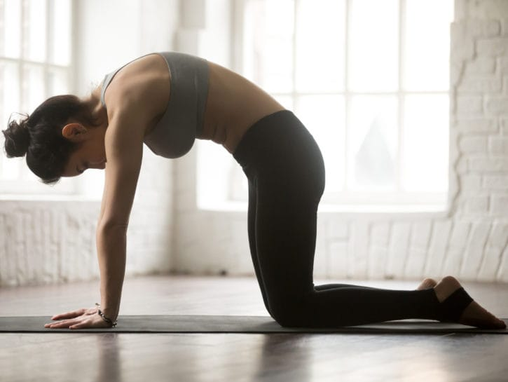 Yoga posizione del gatto
