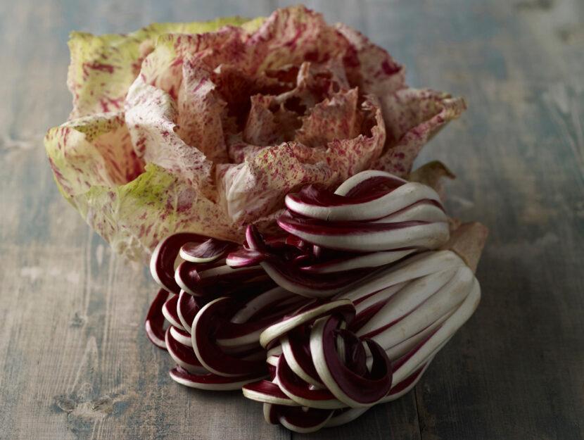 Radicchio rosso di Treviso e radicchio variegato