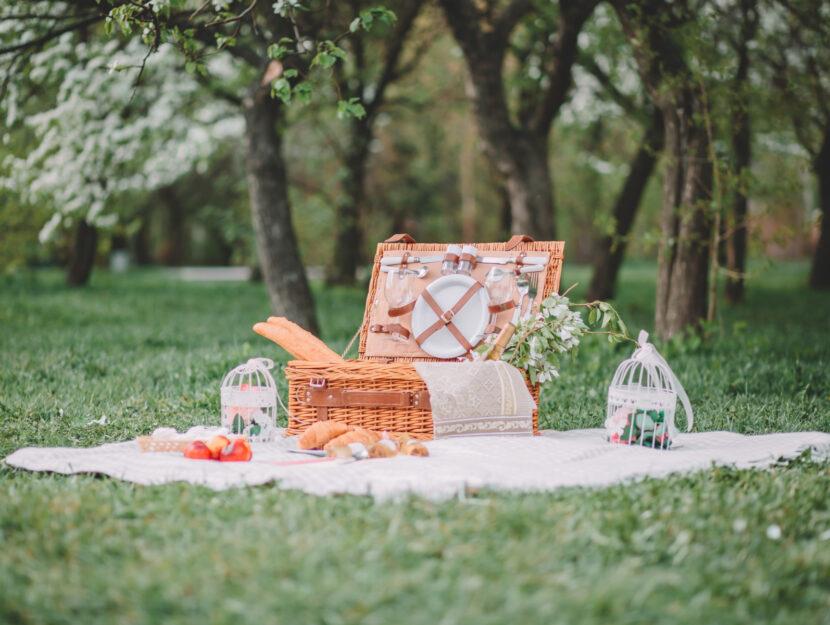 accessori poer il picnic