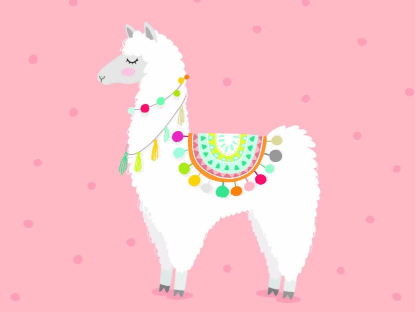 llama alpaca trend moda