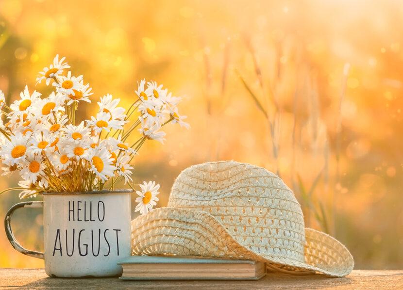 Frasi su agosto